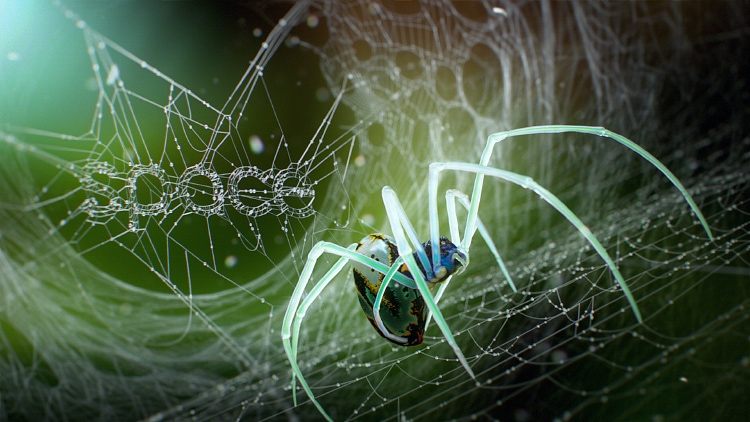 spaceiron_spider_004
