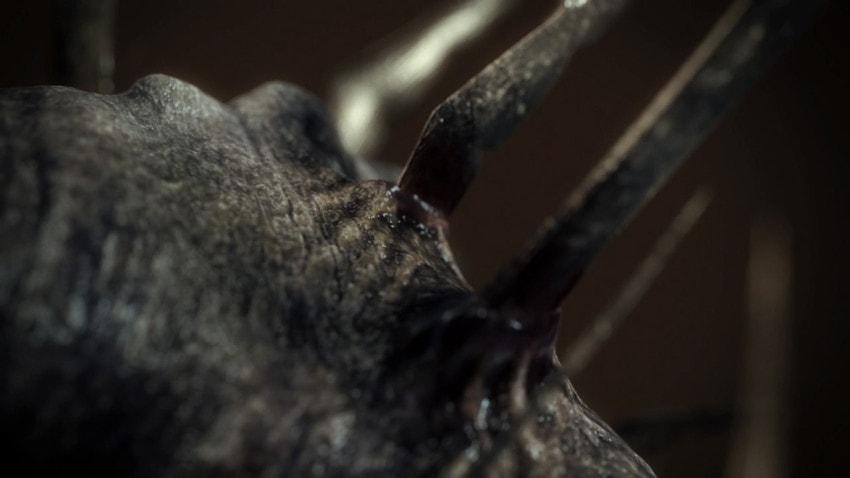 Detail of monster's head